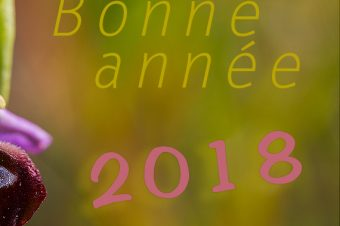 Tous nos vœux 2018